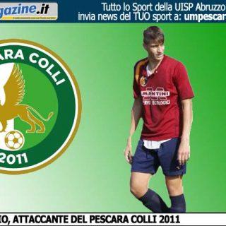 falconiopecolli2011